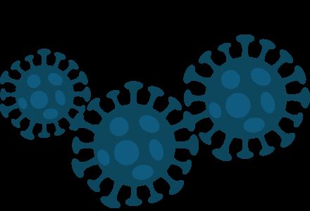 Jobs And Career Options During The Coronavirus Pandemic
